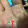 「成功のサインがわかる手相診断」